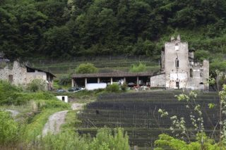 65-stabile-mago-di-cantone-320x213
